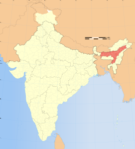 Map of India, Assam District Highlighted (Wikimedia Commons)