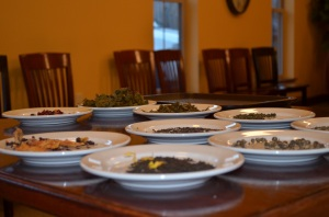 A shot of the display plates holding the dry leaves and infused leaves for each tea.